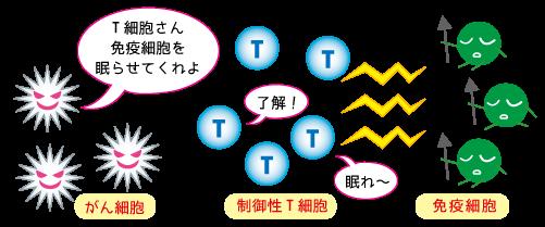 動脈と静脈、埼玉県鶴ヶ島市の漢方相談薬局★坂重薬局