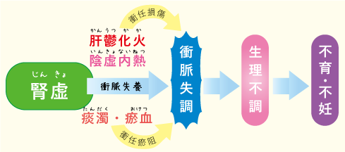 PCOS中医学の考えかた☆川越市鶴ヶ島市の漢方薬局坂重薬局