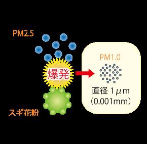 PM2.5とスギ花粉☆川越市鶴ヶ島市の漢方薬局坂重薬局