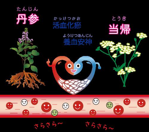 病的血管(異常血管)を減らす、予防する☆川越市鶴ヶ島市の漢方薬局坂重薬局